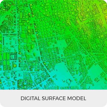 Digital Surface Model